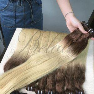 Ombre Color Hair 2c and 24c